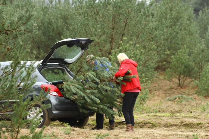 zaag-je-eigen-kerstboom